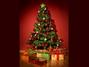 Customs And Traditions Followed During Christmas