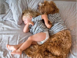 Friendship Between This Little Boy And His Dog Is Too Cute To Handle