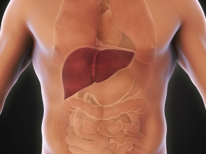 Signs Your Liver Is Overloaded