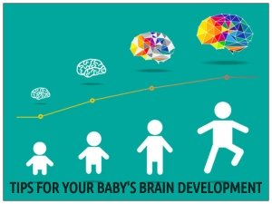 Tips For Your Baby's Brain Development