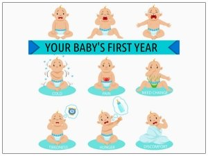 What Happens During The First Twelve Months Of Life?