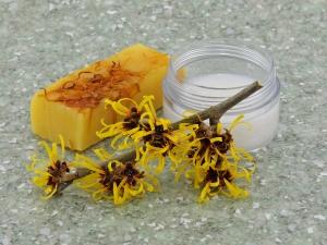 Amazing Benefits Of Witch Hazel Skin