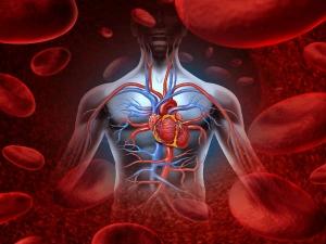 Top Warning Signs Of Poor Blood Circulation