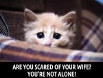 Are You Scared Of Your Wife