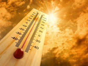 Common Symptoms Of Heat Stroke That You Need To Be Aware Of