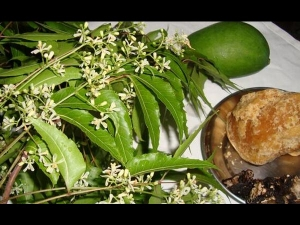 Ugadi And The Taste Of Life