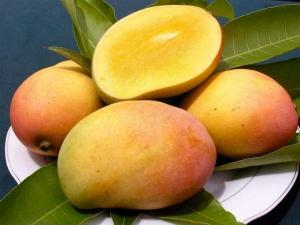 Mangoes Side Effects