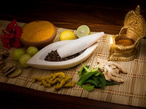 Ayurveda Diet And Back Pain