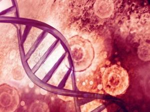 Scientists Discover New Mechanism To Slow Progress Of Neurodegenerative Diseases
