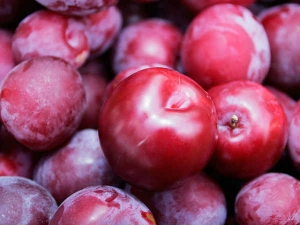Reasons Why You Should Eat More Plums In Monsoon