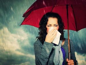 Expert Ayurvedic Tips For Monsoon