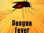 Work On War Footing To Control Spread Of Dengue