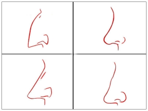 The Shape Of Your Nose Can Reveal Your Personality Type