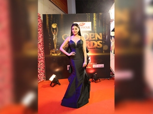 Best Dressed Celebs At Zee Telegu Golden Awards