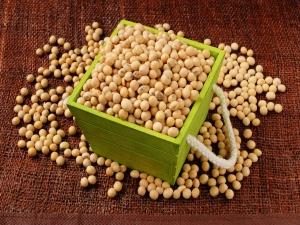 Top 13 Foods Rich In Phosphorus