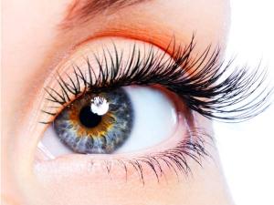 Stem Cell Cure Blindness Macular Denegeration