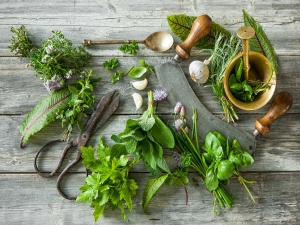 Best Herbs To Use In Cooking