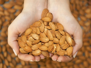 Do Almonds Help You Lose Weight