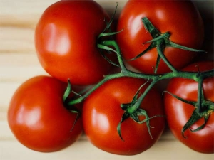 Are Tomatoes Fattening For You
