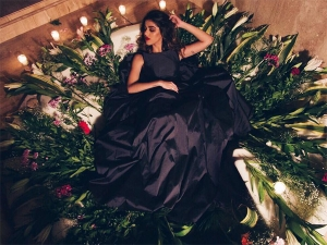 Woah Check Out The Latest Hot And Stylish Pics Of Aalia Furniturewalla