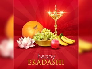 Get Name Fame And Health By Observing The Nirjala Ekadashi Fast