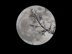 Mistakes To Avoid During Lunar Eclipse Day