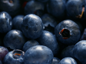 Bilberry Nutrition Value Uses Health Benefits