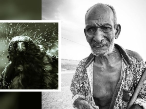 Story Of Indian Village Where Humans And Birds Are Turning Blind