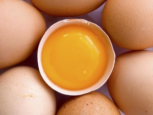 What Is Egg Oil How Use It Hair Care