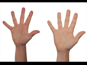 Ever Wondered How The Length Of Finger Reveal Your Sexual Life