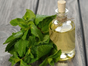Peppermint Oil Benefits Uses Side Effects
