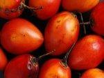 Tamarillo Nutrition Benefits Recipes