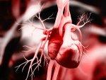 Atrial Fibrillation Causes Types Symptoms Treatment