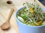 What Is Sulforaphane Benefits Side Effects Sources