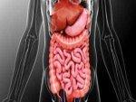 Whipple Disease Causes Symptoms Treatment