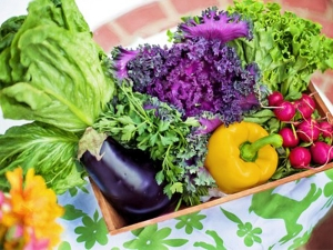 Organic Food Health Benefits