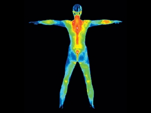 Thermography Procedure Uses Risks