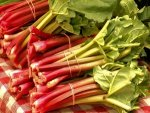 Rhubarb Nutrition Benefits Recipes