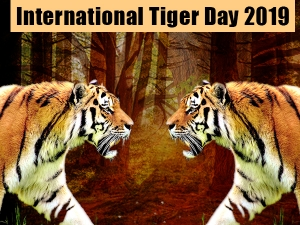International Tiger Day History And Significance