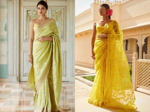 Plain Coloured Saris Makeup And Jewellery For Onam