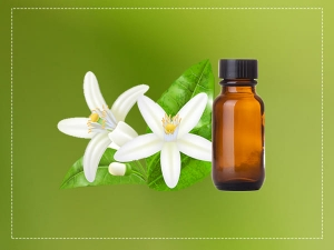 Neroli Essential Oil Health Benefits Uses And Side Effects