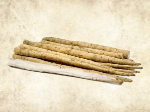 Health Benefits Of Burdock Root