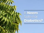 Neem For Diabetes Benefits And How To Use