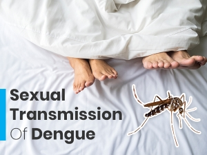 Worlds First Case Of Sexually Transmitted Dengue Fever Reported In Spain