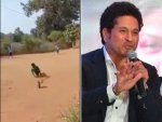 Sachin Tendulkar Shares Heartwarming Video Of Differently Abled Boy Playing Cricket