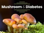 Benefits Of Mushrooms For Diabetes And Recipe