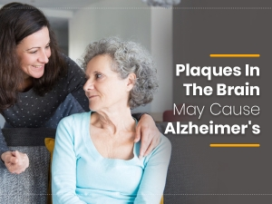 Plaques In The Brain May Cause Alzheimers Disease Study Reveals