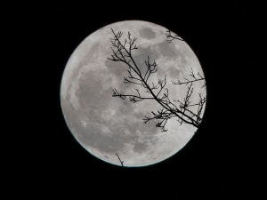 Interesting Facts About Lunar Eclipse
