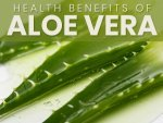 Aloe Vera Nutrition Benefits And Side Effects