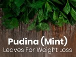Mint Leaves For Weight Loss